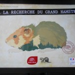 exposition-hamster