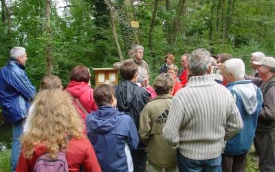 Balade pédagogique à la découverte des plantes sauvages